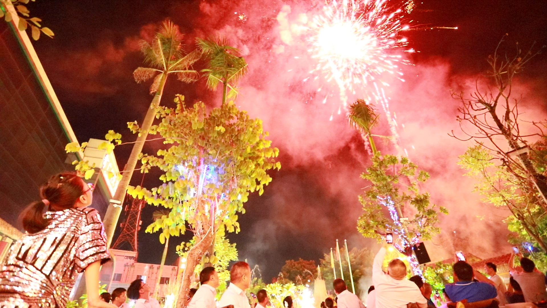 广州vwin德赢备用官网五周年庆——烟花盛宴